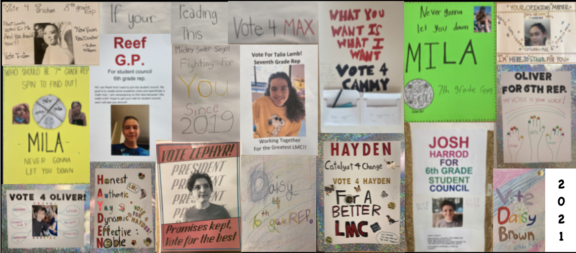 Flyers of different people running for office